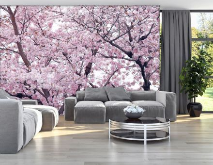 Pink flowering tree photomural wallpaper